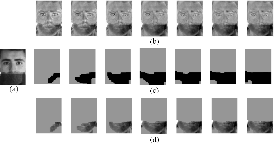 Figure 3 for Structured Occlusion Coding for Robust Face Recognition