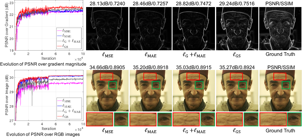 Figure 3 for Dual Reconstruction Nets for Image Super-Resolution with Gradient Sensitive Loss