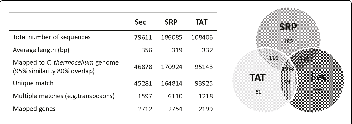 Figure 4 454 sequencing analysis of filtered libraries. Sequencing data for the 3 libraries Sec, SRP, TAT) are shown in the table. The Venn diagram shows the number of different genes shared between the libraries.
