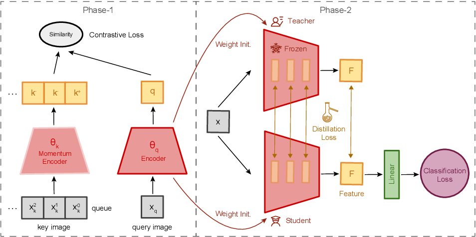 Figure 1 for Distilling Visual Priors from Self-Supervised Learning