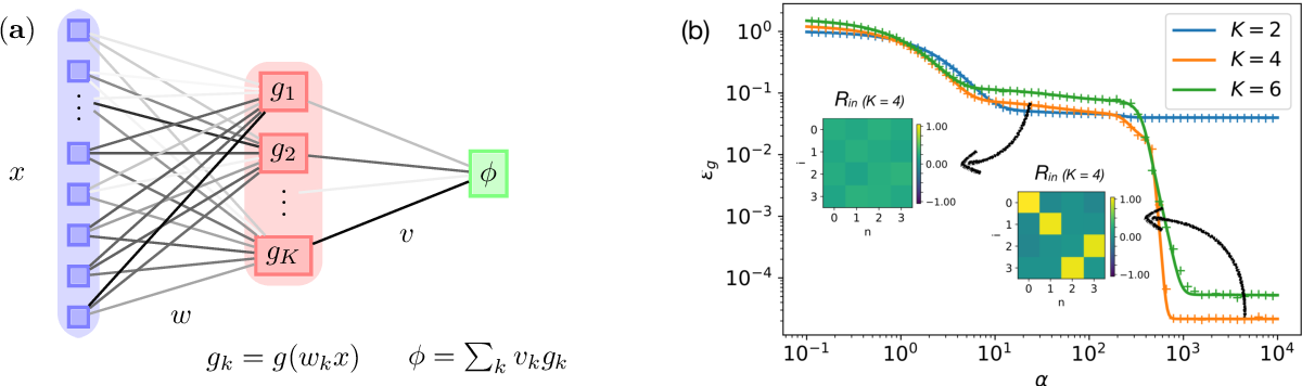 Figure 1 for Dynamics of stochastic gradient descent for two-layer neural networks in the teacher-student setup
