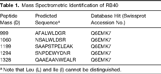 Table 1. Mass Spectrometric Identification of RB40