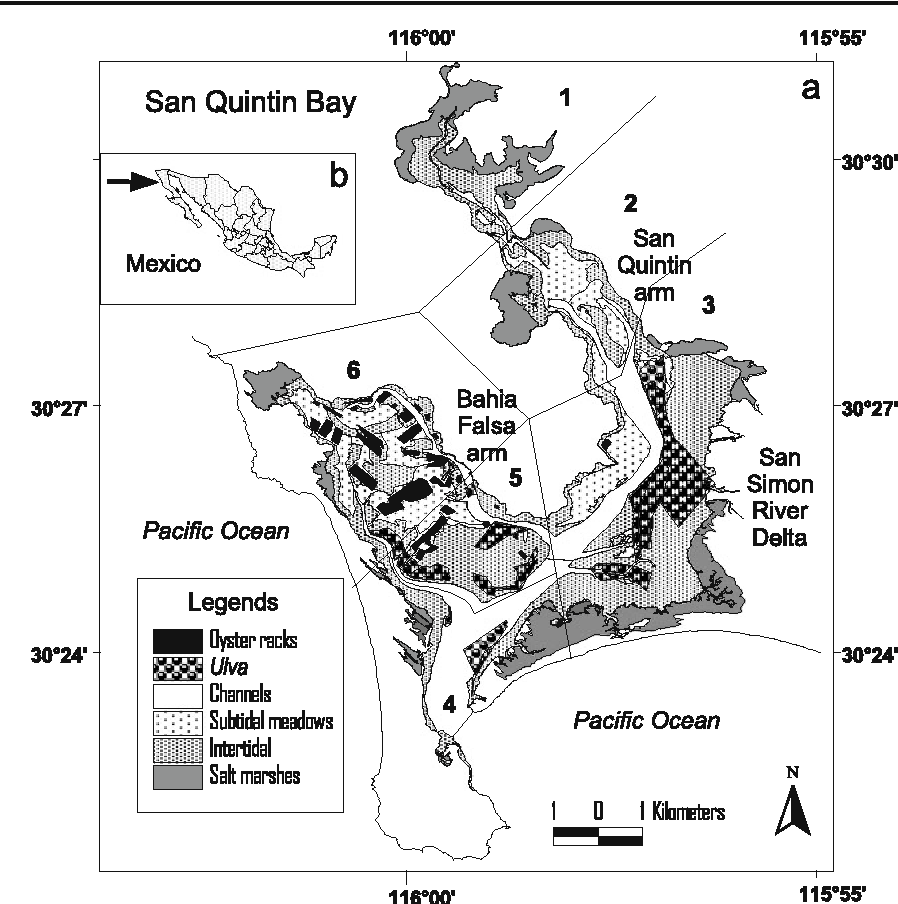 Figure 1 From Management Of Natural Ulva Spp Blooms In San Quintin