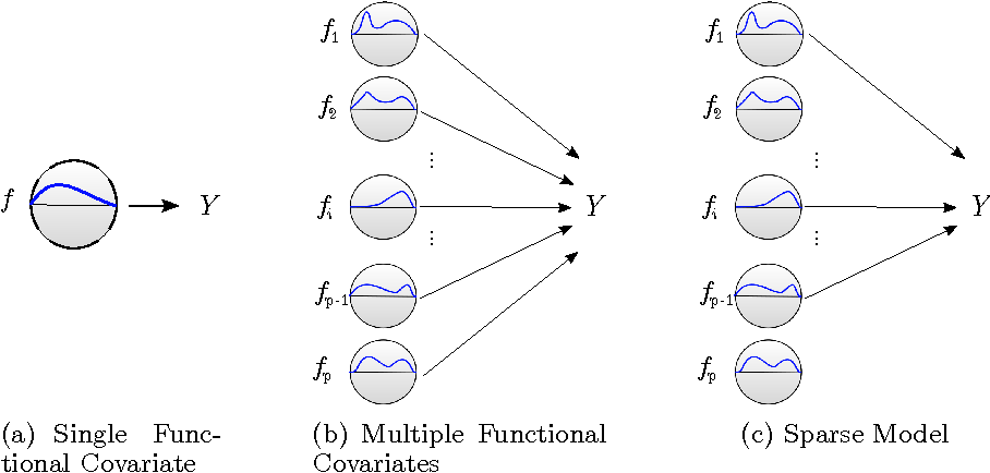 Figure 1 for FuSSO: Functional Shrinkage and Selection Operator