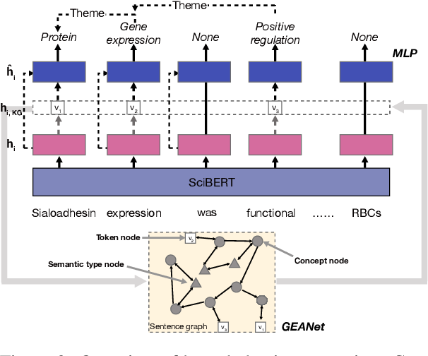 Figure 3 for Biomedical Event Extraction with Hierarchical Knowledge Graphs