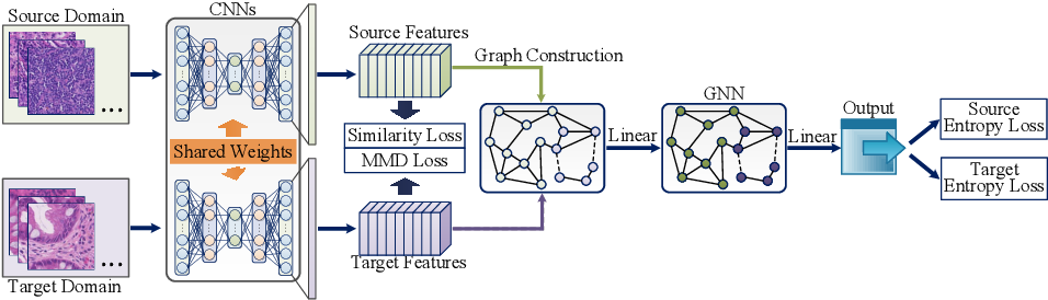 Figure 1 for Graph Neural Networks for UnsupervisedDomain Adaptation of Histopathological ImageAnalytics
