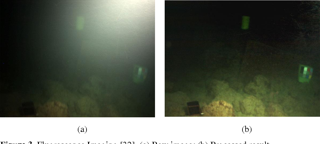 Figure 3 for Underwater Optical Image Processing: A Comprehensive Review