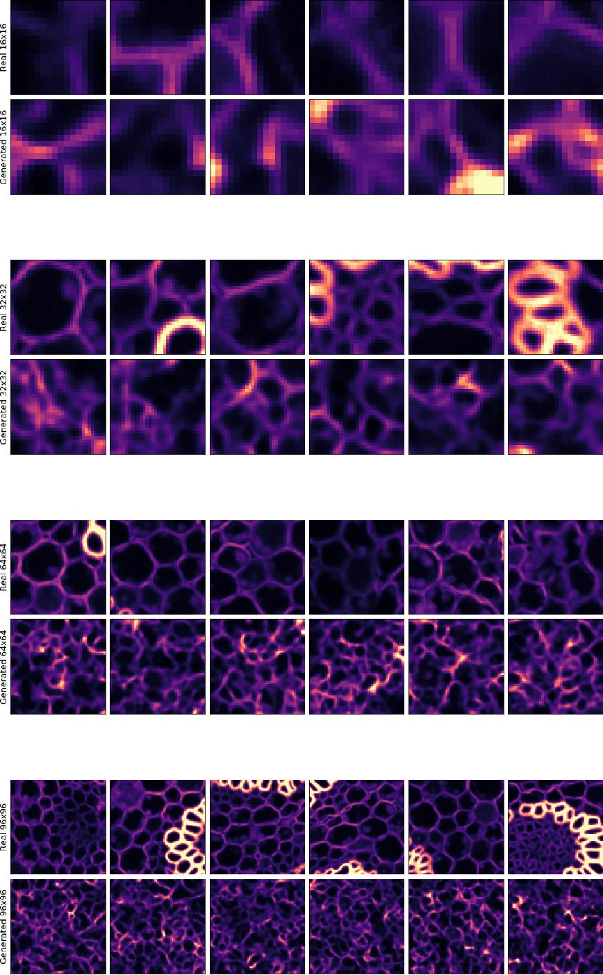 Figure 4 for DivNoising: Diversity Denoising with Fully Convolutional Variational Autoencoders