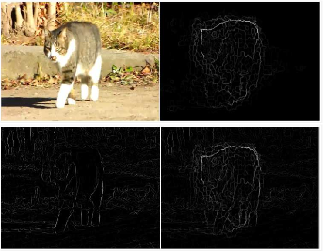 Figure 3 for Detecting Temporally Consistent Objects in Videos through Object Class Label Propagation