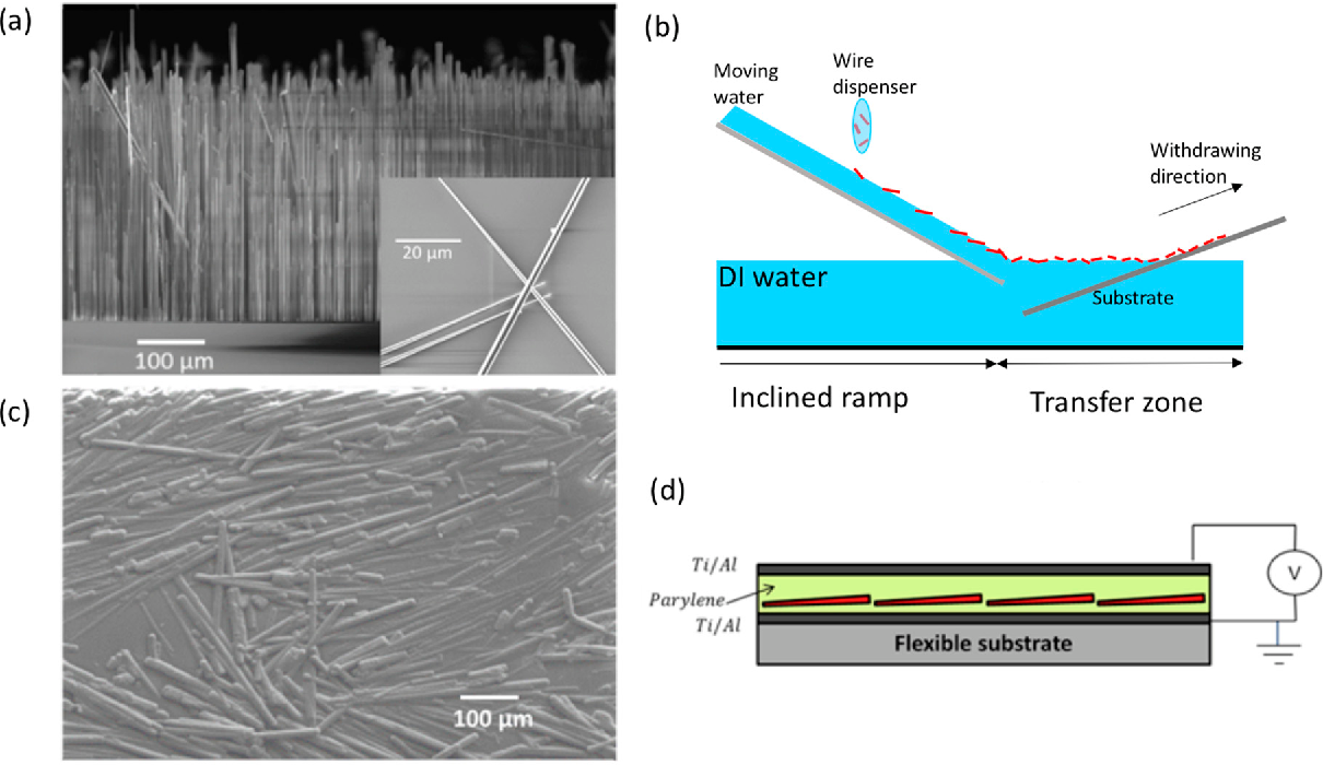 Piezo Potential Generation In Capacitive Flexible Sensors Based On Rod Wiring Diagrams Figure 1