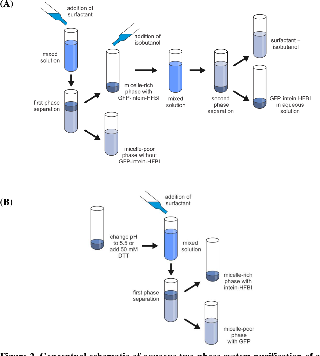 Figure 2 From Purification Of Recombinant Proteins In