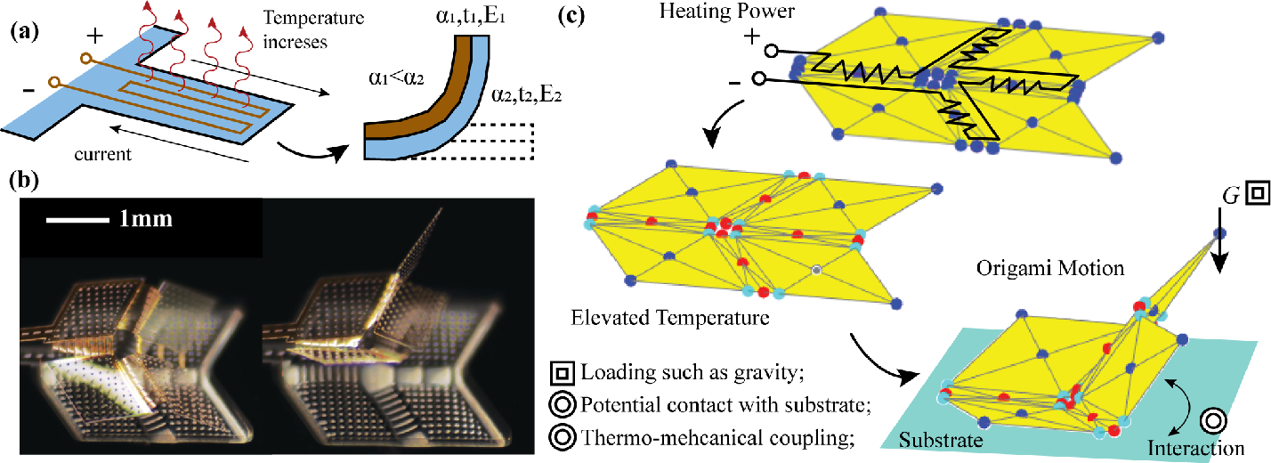Figure 1 for Rapid Multi-Physics Simulation for Electro-Thermal Origami Robotic Systems