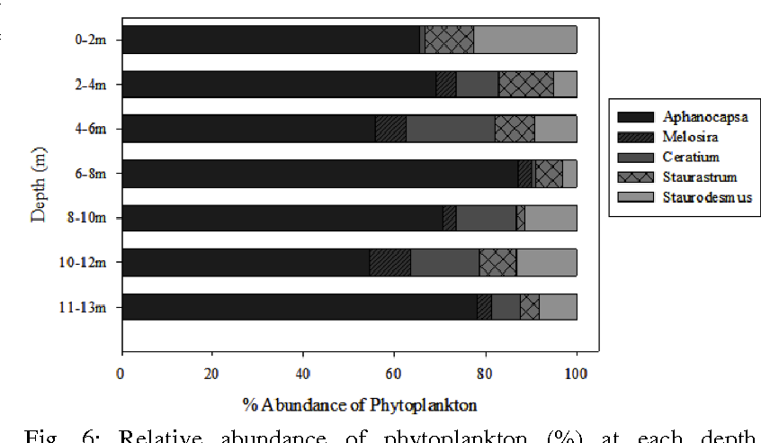Fig. 6: Relative abundance of phytoplankton (%) at each depth. Aphanocapsa, shown in black, was the dominant phytoplankton species in Christine Lake.