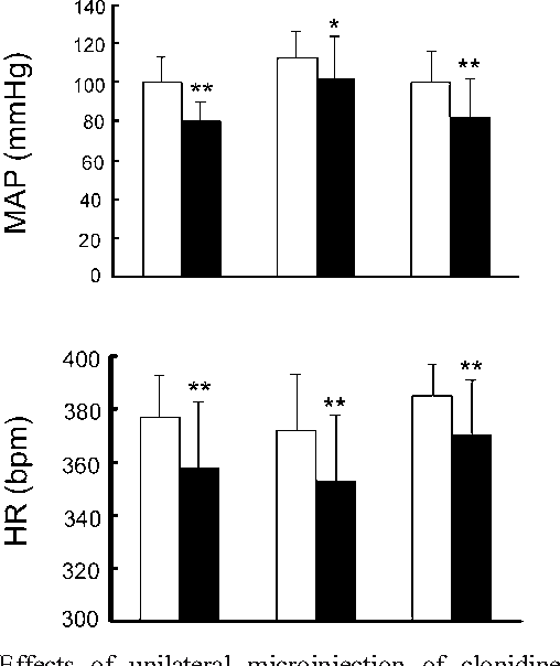 Cardiovascular effects of agmatine within the rostral ventrolateral