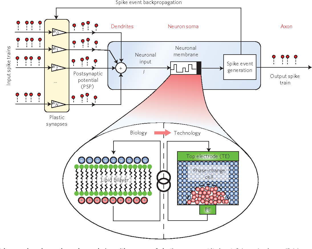 Figure 1 from stochastic phase change neurons semantic scholar figure 1 artificial neuron based on a phase change device with an array ccuart Gallery