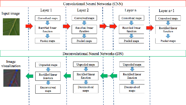 Figure 4 for Deep-Plant: Plant Identification with convolutional neural networks