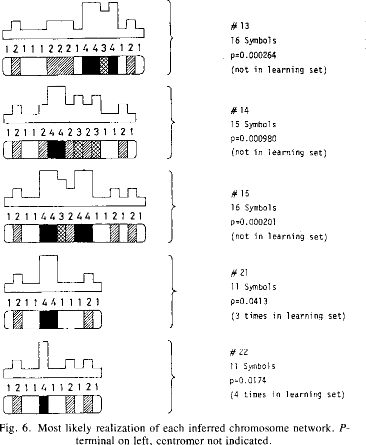 Dynamic Programming Inference Of Markov Networks From Finite Sets Of