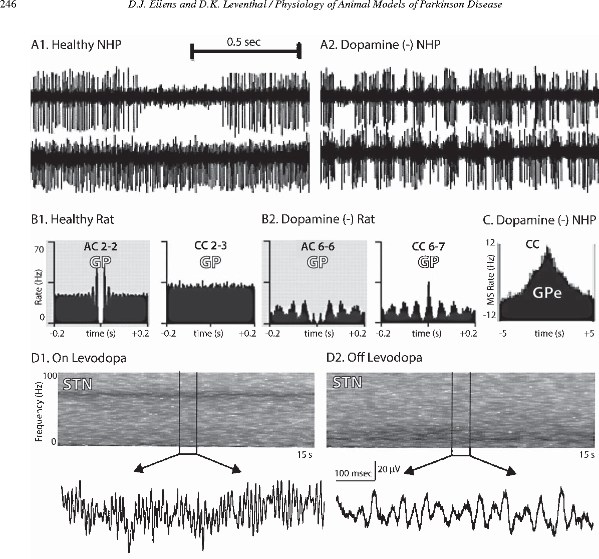 Review: electrophysiology of basal ganglia and cortex in models of ...
