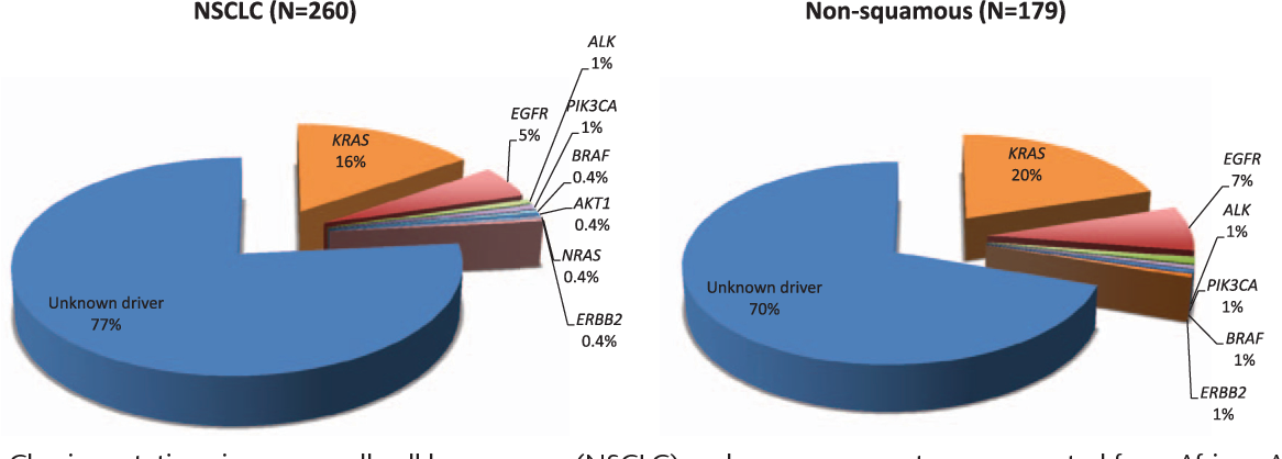 FIGURE 1. Classic mutations in non–small-cell lung cancer (NSCLC) and nonsquamous tumors resected from African Americans.