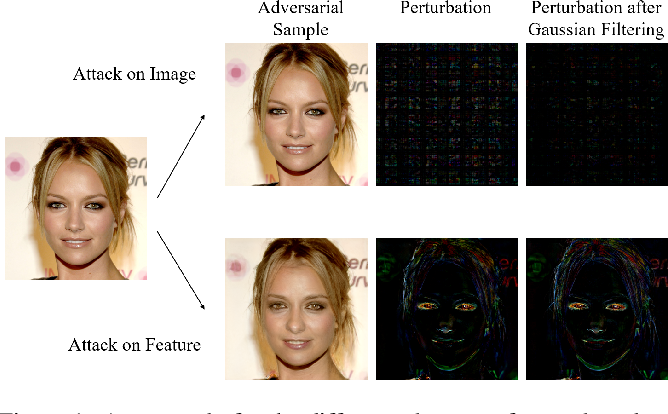 Figure 1 for Generate High-Resolution Adversarial Samples by Identifying Effective Features