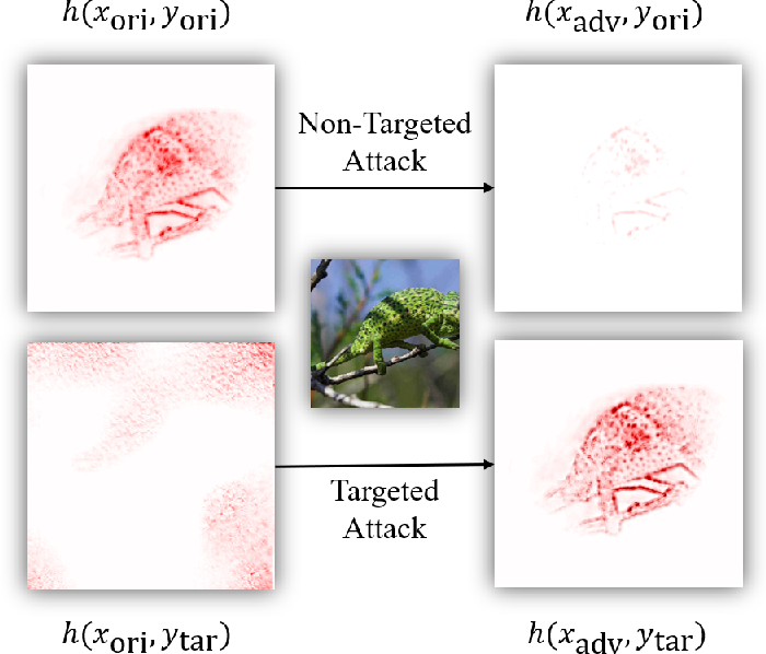 Figure 3 for Universal Adversarial Attack on Attention and the Resulting Dataset DAmageNet
