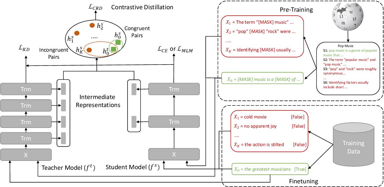 Figure 1 for Contrastive Distillation on Intermediate Representations for Language Model Compression