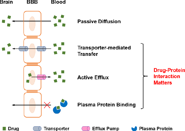 Figure 1 for Relational graph convolutional networks for predicting blood-brain barrier penetration of drug molecules