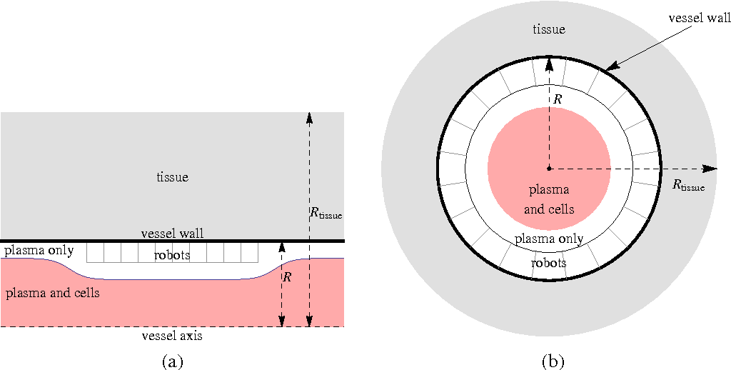 Figure 1 for Chemical Power for Microscopic Robots in Capillaries