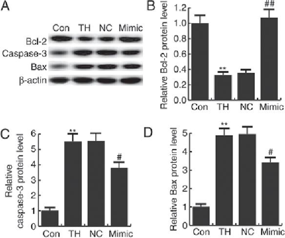 Figure 6 from microRNA-124-3p inhibits the progression of congenital ...