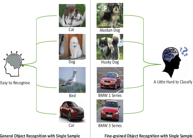 Figure 1 for Compare More Nuanced:Pairwise Alignment Bilinear Network For Few-shot Fine-grained Learning