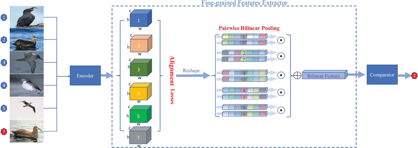 Figure 3 for Compare More Nuanced:Pairwise Alignment Bilinear Network For Few-shot Fine-grained Learning