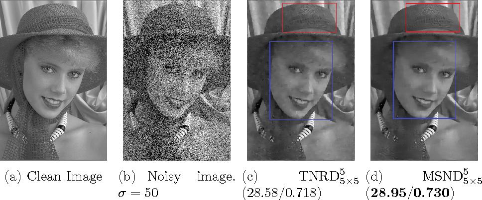 Figure 1 for Image Denoising via Multi-scale Nonlinear Diffusion Models