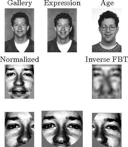 Figure 1 for Face Verification in Polar Frequency Domain: a Biologically Motivated Approach
