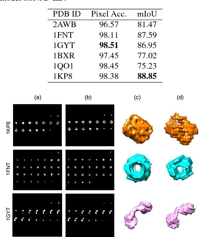 Figure 3 for Deep learning based supervised semantic segmentation of Electron Cryo-Subtomograms
