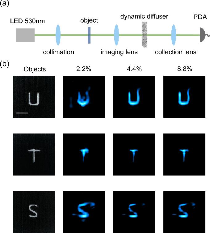 Figure 2 for Single-pixel diffuser camera