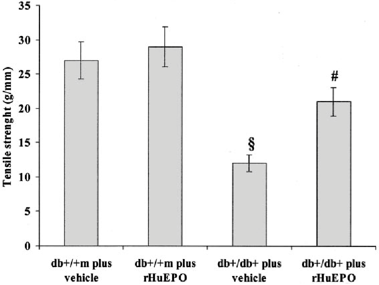 FIG. 7. Wound-breaking strength (day 12) in db / m and db /db mice given vehicle or rHuEPO. Each point represents the mean SD of seven experiments. §P < 0.01, db /db versus db / m; #P < 0.05, db /db treated with rHuEPO versus vehicle.