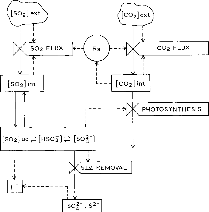 Figure 1 From Modelling Short Term Effects Of Sulphur Dioxide 1 A