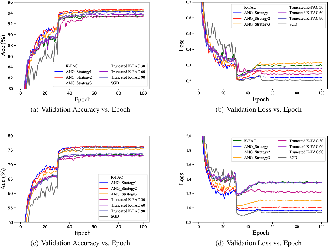 Figure 1 for AsymptoticNG: A regularized natural gradient optimization algorithm with look-ahead strategy