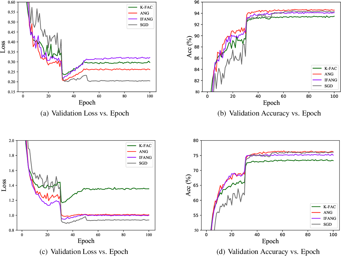 Figure 4 for AsymptoticNG: A regularized natural gradient optimization algorithm with look-ahead strategy