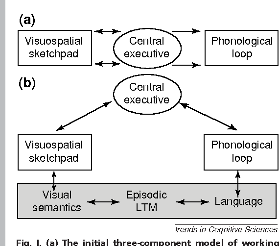 The Episodic Buffer A New Component Of Working Memory Semantic