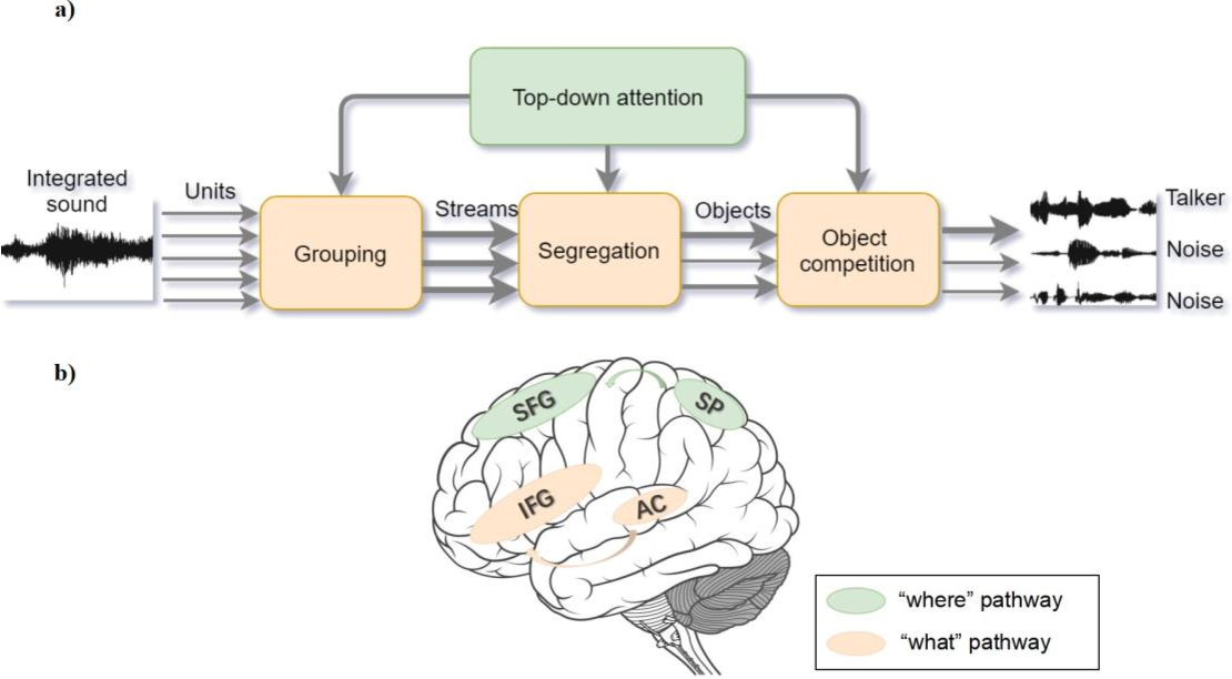 Figure 3 for What can computational models learn from human selective attention? A review from an audiovisual crossmodal perspective