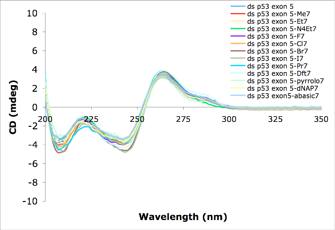 Figure 5.3 CD spectra of structurally modified DNA duplexes (9.7 µM) in 50 mM sodium chloride, 10 mM sodium phosphate, pH 7.0 containing a cytosine analog opposite guanine.