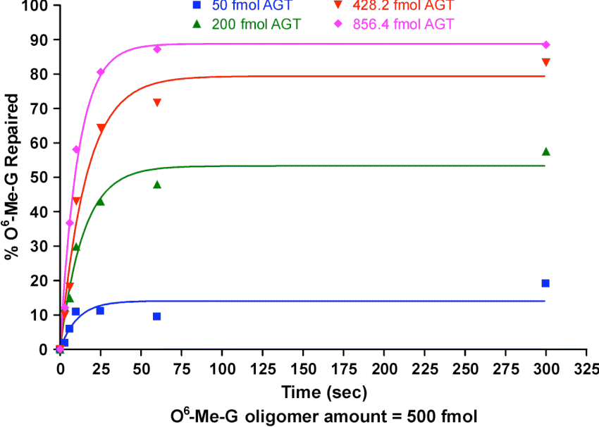 Figure 2.6 Time course of O6-Me-G repair within a DNA duplex derived from K-ras gene in the presence of different amounts of AGT. Synthetic DNA duplex 5'-GTA GTT GGA GCT [O6-Me-G] GT GGC GTA GGC AAG AGT-3', (+ complement, 500 fmol) was incubated with 50, 200, 428 or 856 fmol of human recombinant AGT protein, and the reactions were terminated at different time points by the addition of HCl. The samples were acid hydrolyzed to release purines, followed by the addition of O6-CD3-G internal standard and HPLC-ESI+-MS/MS analysis of O6-Me-G.