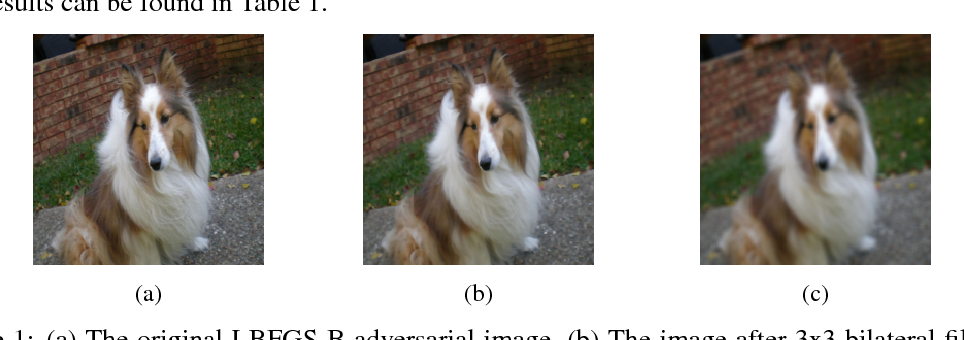 Figure 1 for Unifying Bilateral Filtering and Adversarial Training for Robust Neural Networks