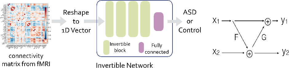 Figure 1 for Invertible Network for Classification and Biomarker Selection for ASD