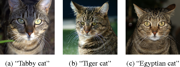 Figure 3 for Multilevel Context Representation for Improving Object Recognition