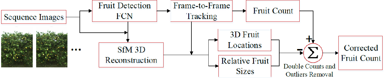 Figure 2 for Robust Fruit Counting: Combining Deep Learning, Tracking, and Structure from Motion