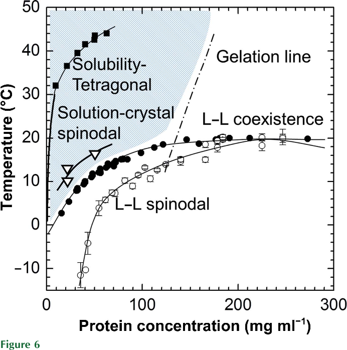 Figure 6 From Nucleation Precursors In Protein Crystallization
