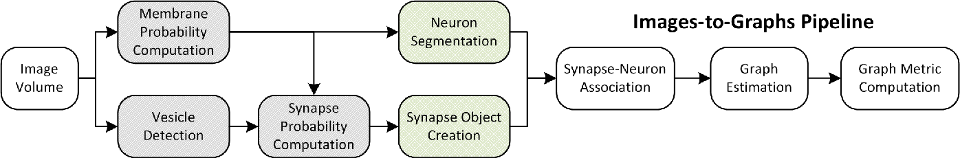 Figure 2 for An Automated Images-to-Graphs Framework for High Resolution Connectomics