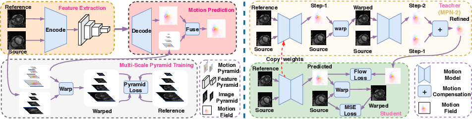 Figure 1 for Motion Pyramid Networks for Accurate and Efficient Cardiac Motion Estimation